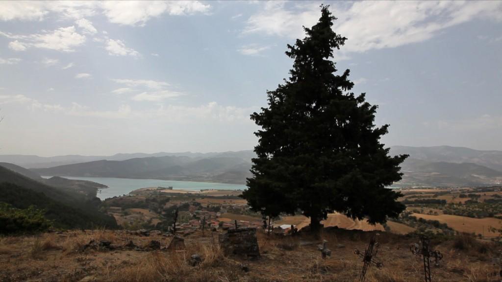 Aramunt-TREE